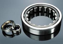 bearing in conveyor idler